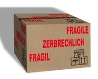 Contenitore fragile di scatola Fotografia Stock