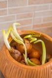 Contenitore per le cipolle Fotografia Stock
