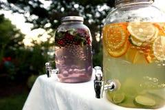 Contenitori dell'acqua della frutta Fotografia Stock Libera da Diritti