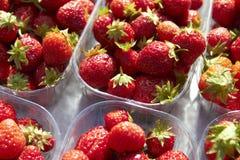 Contenitori delle fragole fresche sulla stalla del mercato Immagini Stock Libere da Diritti