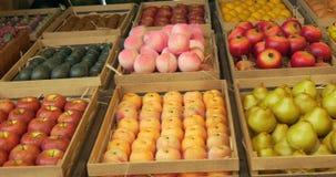 Contenitori di frutta stock footage