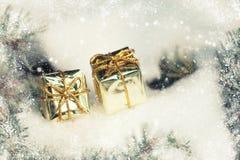 Contenitori di regalo dorati sull'albero di inverno con le precipitazioni nevose Immagini Stock