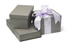 Contenitori di regalo grigi Fotografie Stock Libere da Diritti