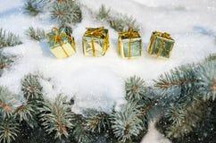 Contenitori di regalo sull'albero di inverno con le precipitazioni nevose Fotografia Stock Libera da Diritti