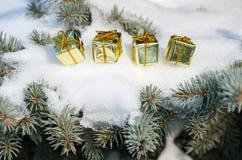 Contenitori di regalo sull'albero di inverno con neve Fotografia Stock Libera da Diritti