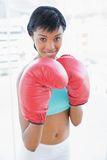 Content black haired woman boxing the camera Royalty Free Stock Photo