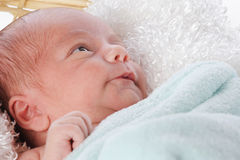 Content Newborn Stock Photo