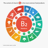 Content of vitamin B2 in the most common food products. Royalty Free Stock Image
