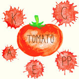 The content of vitamins in tomato. Stock Image