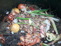 The contents of compost heap bin decaying stock photo
