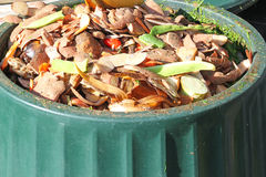 Contenuti di un recipiente di composta Riciclaggio del cascame vegetale Fotografie Stock
