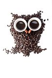 Conteptual owl made with coffee beans. And cups Royalty Free Stock Photos