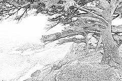 Contes 3 de mer Image stock