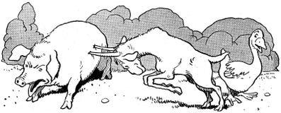 contes de la chèvre noire-35 Stock Photo
