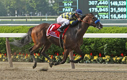 Contested Wins The Acorn Stakes Stock Photo