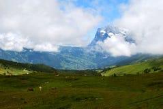 Contesto della montagna Fotografia Stock Libera da Diritti