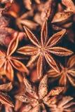Contesto della stella Anise Fruits e dei semi Immagini Stock