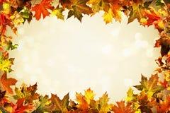 Contesto di autunno delle foglie di autunno variopinte Immagine Stock Libera da Diritti