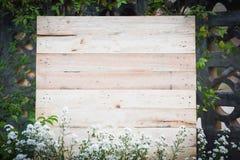 Contesto di legno con la pianta del fiore bianco nel giardino/bordo di legno fotografia stock