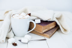 Contesto domestico accogliente di inverno fotografie stock libere da diritti