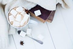 Contesto domestico accogliente di inverno fotografia stock libera da diritti