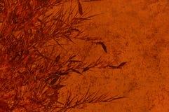 Contesto marrone strutturato con i fogli dei bambù Fotografie Stock