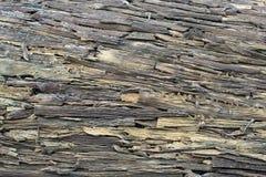 Contexte des morceaux de mur en bois d'écorces image libre de droits
