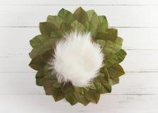 Contexte nouveau-né de Digital avec des feuilles sur un Tableau en bois photos stock