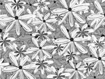 Contexto blanco y negro del estampado de flores del modelo de la camisa hawaiana Imagenes de archivo