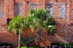 Contexto da parede de tijolo Imagem de Stock
