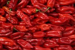 Contexto das pimentas vermelhas Fotos de Stock Royalty Free