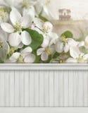 Contexto del fondo de la pared de la escena de la primavera Fotografía de archivo