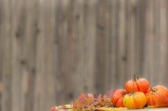 Contexto del otoño Imagenes de archivo