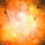 Contexto festivo com aranhas e Web Fotos de Stock Royalty Free