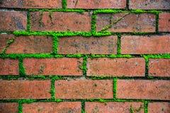 Contexto marrom vermelho retro textured envelhecido velho detalhado close up do papel de parede da superfície da parede do bloco  imagens de stock
