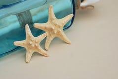 Contexto náutico do tema, estrela do mar decorativa no fundo neutro do marfim Lugar para o texto Foco seletivo imagens de stock