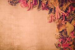 Contexto secado vintage de la flor Imagen de archivo libre de regalías