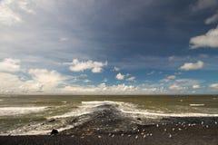 Contiene barreras en el Mar del Norte peterson Países Bajos Imágenes de archivo libres de regalías