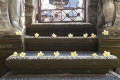 Contiene los templos en Ubud, Bali Imagen de archivo