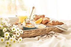 Wicker tray with continental breakfast on white bed sheets. Continental breakfast on white bed sheets. Coffee, orange juice, croissants, jam, honey and flowers Royalty Free Stock Images