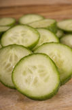 Continental Cucumber Royalty Free Stock Photos
