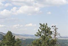 Continental Divide Boulder, Colorado USA Royalty Free Stock Images