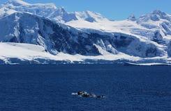 Continente antartico fotografie stock