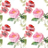 Seamless pattern of garden red rose flower. Watercolor floral illustration. Botanical decorative element. Flower concept. Continuous gentle blooming plant stock illustration