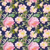 Seamless pattern of summer garden yellow and pink rose flower. Watercolor floral illustration on dark blue background. Continuous gentle blooming plant pattern vector illustration