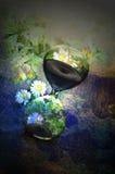Conto alla rovescia - salvo biodiversità Fotografia Stock