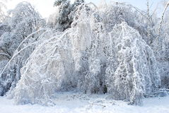 Conto de fadas congelado Foto de Stock