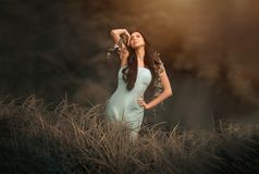 Conto de fadas da fantasia e mulher bonita - ninfa de madeira fotos de stock