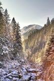 Conto de fadas do inverno Fotos de Stock