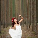 Conto de fadas na floresta Imagem de Stock Royalty Free